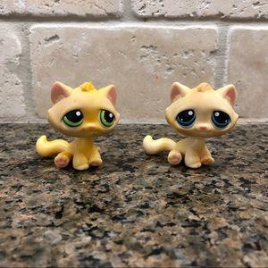 Littlest Pet Shop Lps kitty cat EUC Pink Magnet